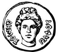 pafos municipality1